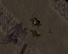 Sir Rayyymor et GreyMaulken examinant un dragon à deux têtes.